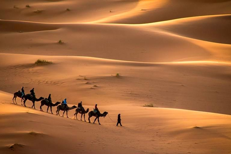 Mundi oraganisation voyage desert